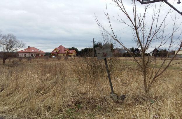 Nieruchomość gruntowa niezabudowana położona przy ul. Rumiankowej – działka nr 137/4, obr. 4209