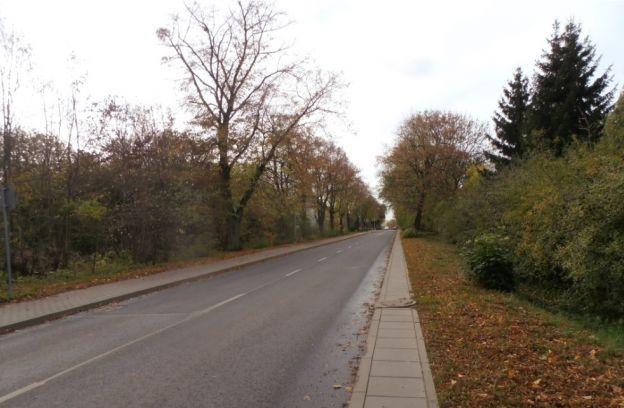 Nieruchomość gruntowa niezabudowana położona przy ul. Doroty – działki nr 45/46 i 43, obr. 3004