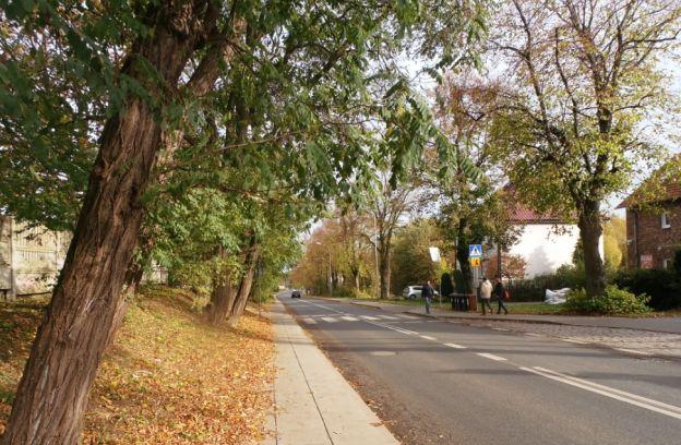 Nieruchomość gruntowa niezabudowana położona przy ul. Polickiej – działka nr 45/51, obr. 3004