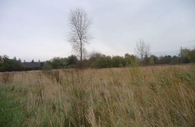 Nieruchomość gruntowa położona przy ul. Kutrzeby – dz. nr 12/134 z obrębu 2074.